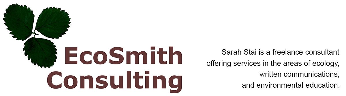 EcoSmith Consulting